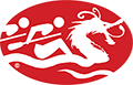 Texas Dragon Boat Association Logo